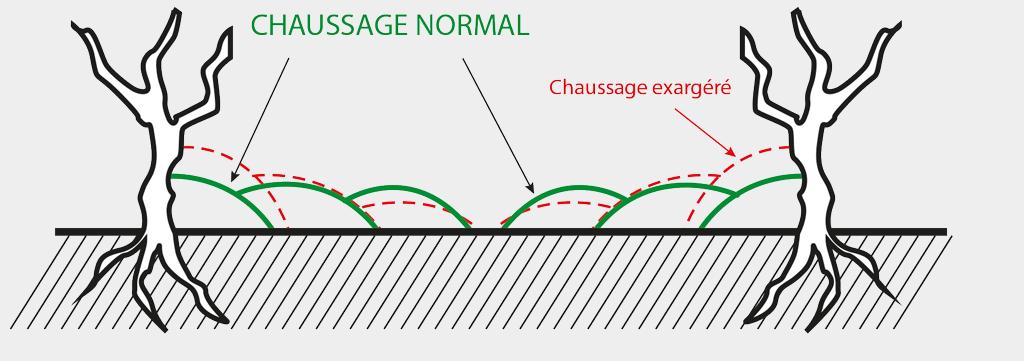 Chaussage